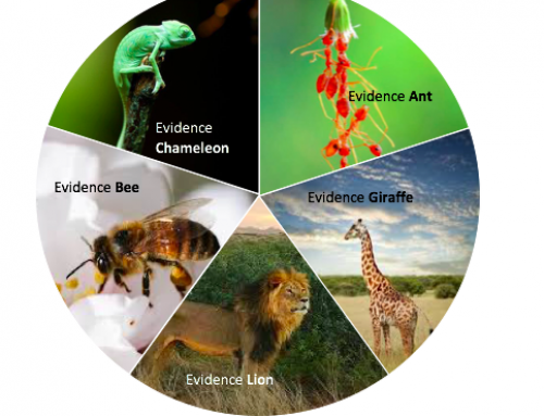 Evidence animals, evidence maps, and rapid response services
