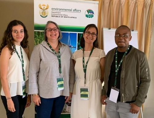 A Canadian health intern's experience of the environmental policy-science interface in South Africa